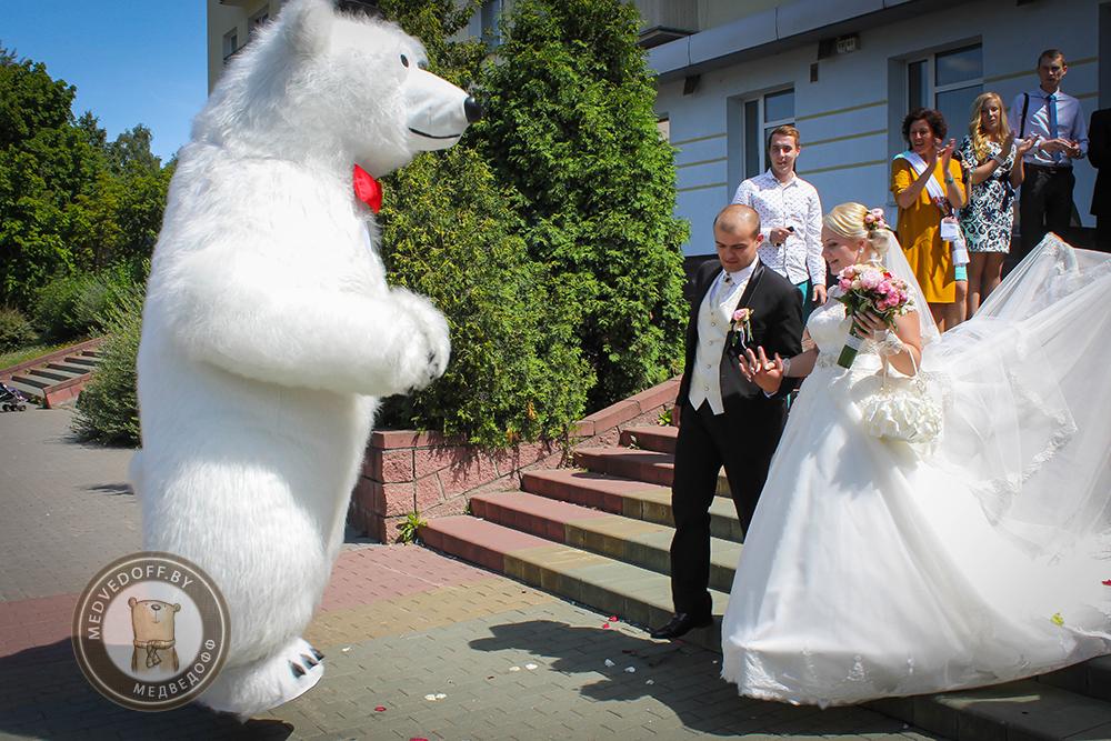 Танцующий медведь в Минске встречает молодоженов из ЗАГСА заводского района