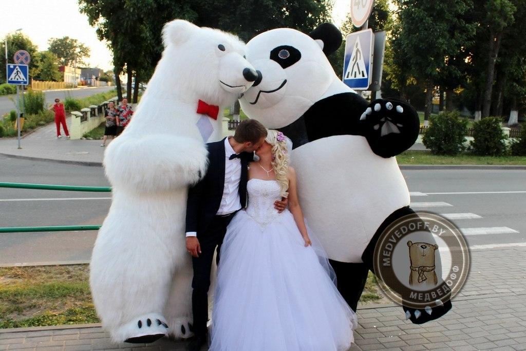 Танцевальное шоу медведей на свадьбу
