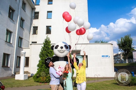 Панда с бело-розовыми шариками веселый праздник на выписке из роддома