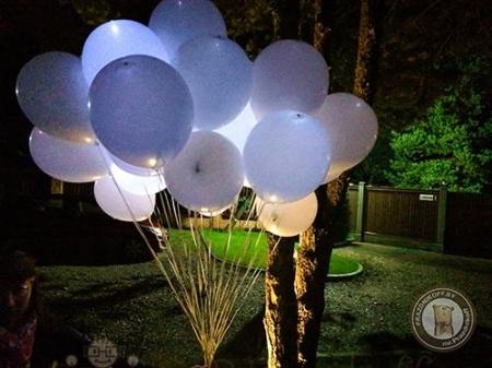 Шары белые светящиеся для запуска на свадьбе в Минске